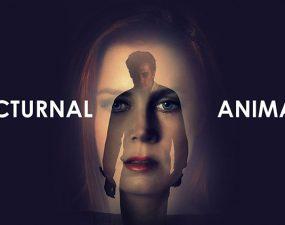 nocturnal_animals_gece_hayvanlari