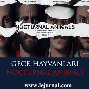 nocturnal_animals_2015_gece_hayvanlari
